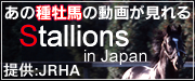 Stallions in Japan